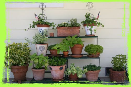 Plant stand grunge