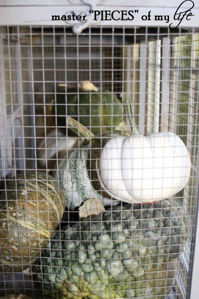 Pumpkin birdcage 5