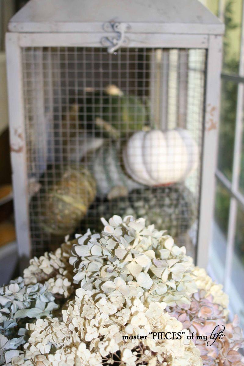 Pumpkin birdcage 7